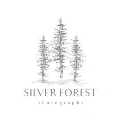 Super Pine Tree Design Stamp Sets 42 Ideas Tree Logo Design Tree Logos Forest Logo
