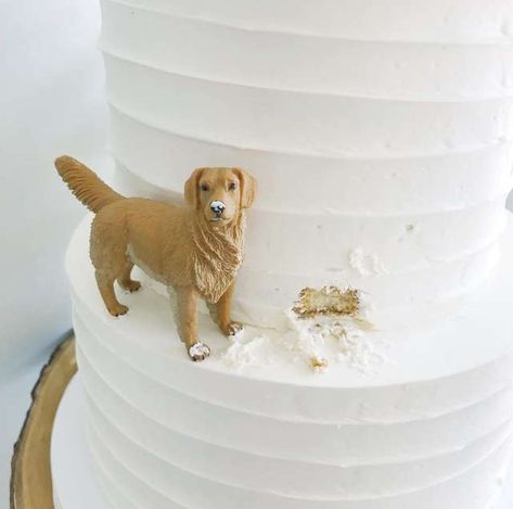 Wedding Cakes Discover Couple Has The Best Dog Themed Wedding Cake Ever So perfect. Floral Wedding Cakes, Themed Wedding Cakes, Cool Wedding Cakes, Wedding Cake Designs, Wedding Cupcakes, Floral Cake, Purple Wedding, Lace Wedding, Dog Wedding Cake Toppers