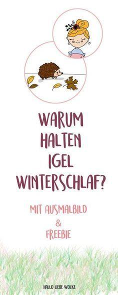 Igel Isi Und Der Winterschlaf Lerngeschichte Printable Hallo Liebe Wolke Igel Igel Winterschlaf Igel Im Winter