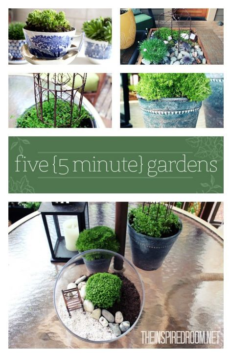 5 minute gardens