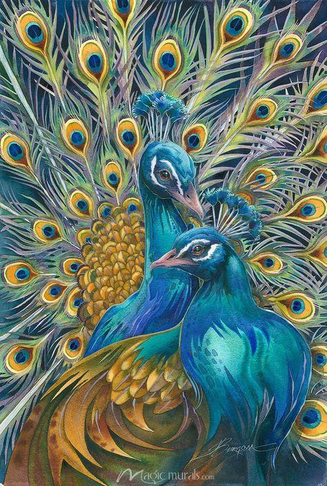 Proud Peacocks