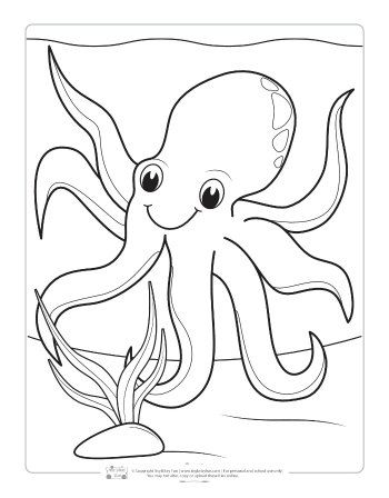 Ocean Animals Coloring Pages For Kids Animal Coloring Pages