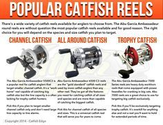 Popular Catfish Reels for all species and sizes of catfish