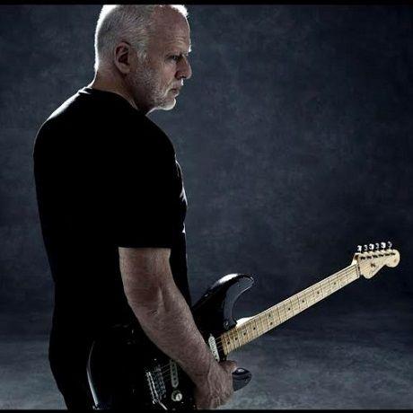 David Gilmour Comfortably Numb Live At Pompeii In 2020 David Gilmour David Gilmour Pink Floyd David Gilmour Live