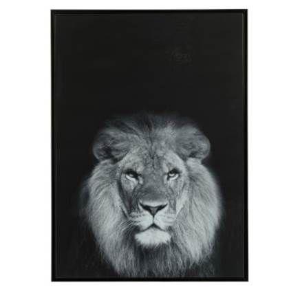 J Line Schilderij Leeuw 52x72cm Schilderij Leeuw Dieren