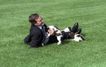 The 42 Best Photos Ever Taken Of White House Pets Pets Dogs