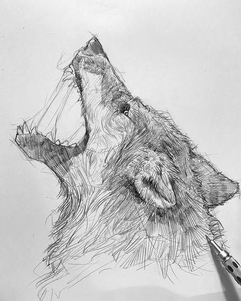 500+ Rysunki wilki ideas | rysunki, wilki, rysunek