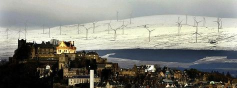 Wind farms 'not major bird mincers'