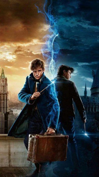 Fondo de pantalla para celular con Harry Potter y Newt Scamander, universo Harry Potter