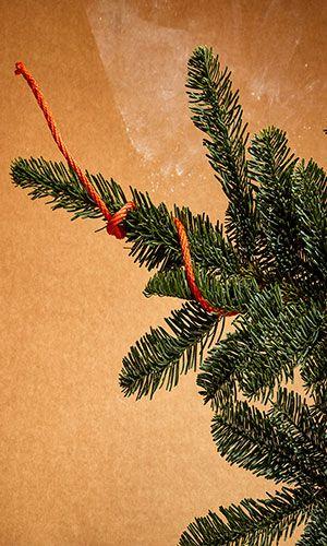 Weihnachtsdeko Hornbach.Seil Paraloc Mamutec Polypropylen Orange ø 10 Mm 20 M Weihnachten