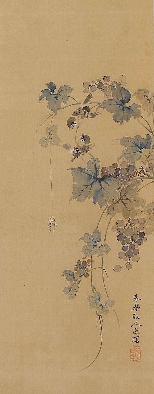 Sparrows in Grapes by Urakami Shunkin (1779-1846). Japanese Hanging Scroll painting Kakejiku.