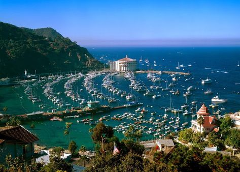 Catalina Island Driving Distance From La 45 Minutes To Long Beach 1 Hour Ferry Ride Best Beaches To Visit Catalina Island California Honeymoon