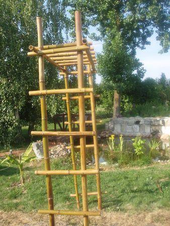 Quoi Fabriquer Avec Des Bambous Deco Bambou Haie Bambou
