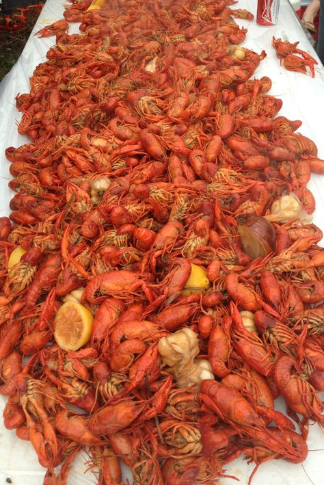 Not only are there lots of house parties during Mardi Gras but also crawfish boils. Such a great way to get together with friends and family!