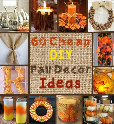 60 Cheap DIY Fall / Autumn Decor Ideas