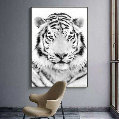 White Tiger Animal Art Poster Canvas Wall Print Modern Living Room Decoration Ebay Animal Wall Painting Wall Canvas Wall Art Decor Living Room White tiger living room decor