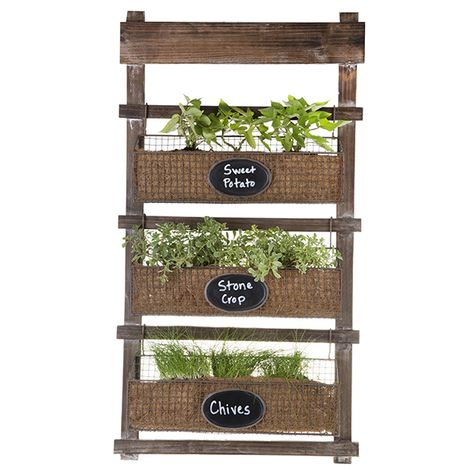 Three Tier Wooden Hanging Shelf With Wire Planter Baskets The Lucky Clover Trading Co Container Flowers Hanging Shelves Hanging Plants