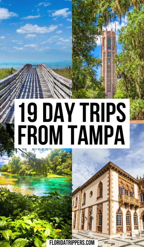 Visit Florida, Florida Living, Tampa Florida, Florida Vacation, Vacation Places, Vacation Spots, Places To Travel, Travel Destinations, Clearwater Florida