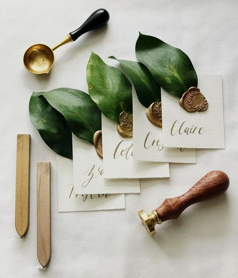 Provide your celebration an elegant and organic contact with these level escort credit cards. Greeti