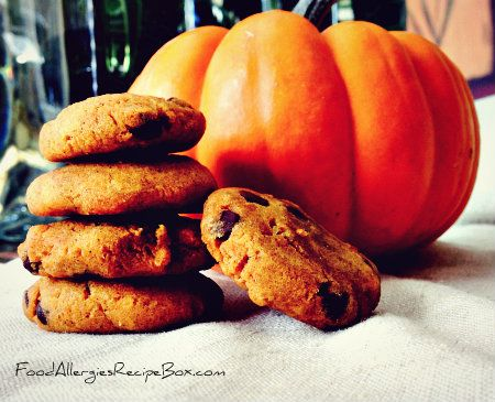 744 best food allergies recipe box images on pinterest recipe pumpkin cookie recipe wheat egg and gluten free pumpkincookierecipe wheatfreediet forumfinder Images