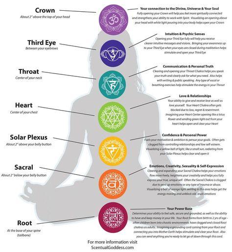 Chakra Meditation, Chakra Yoga, Yoga Chakras, Chakra Art, Meditation Music, Meditation Tattoo, Meditation Crystals, Sacral Chakra Healing, Meditating With Crystals