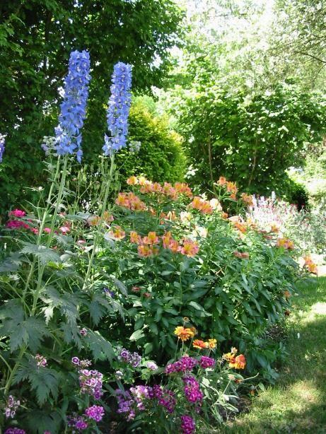 Massif De Fleurs Mois De Mai Massif Fleurs Idees Jardin Fleurs Mois