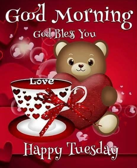 Bear Of Love Happy Tuesday Morning Image good morning tuesday tuesday q… |  Happy valentine day quotes, Happy valentines day quotes friends, Happy  valentines message