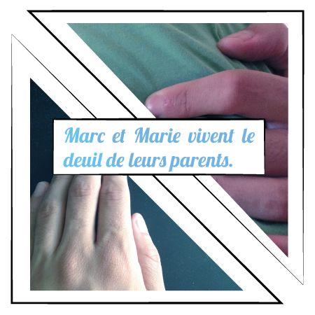Histoire concernant le deuil à l'adolescence. Permet au jeune de s'identifier et de voir les étapes du deuil après la perte d'un être cher.