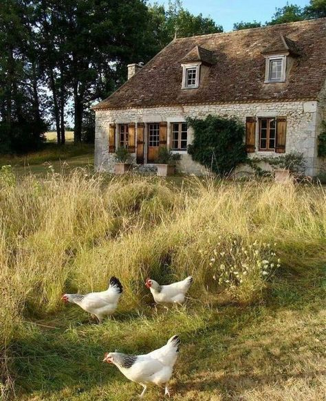 French Country Cottage, French Country Decorating, Country Life, Country Living, Country Style, Cottage Decorating, Country Charm, French Decor, Ed Wallpaper
