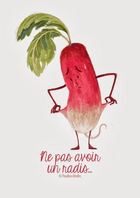 ne pas avoir un radis = ne pas avoir d'argent! - french board - https://www.pinterest.com/languagecomics/french-learning/