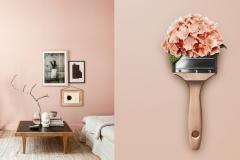 Wandgestaltung In Betonoptik Schoner Wohnen Schoner Wohnen Trendfarbe Schoner Wohnen Farbe Schoner Wohnen Wandfarbe