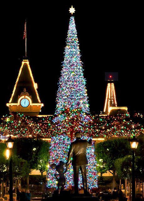 Walt Disney and Mickey Mouse at Main Street U. during Christmas in Disney World. Parc Disneyland, Disneyland Christmas, Disney World Christmas, Noel Christmas, All Things Christmas, Disney Holidays, Xmas, Magic Kingdom Christmas, Disney Dream