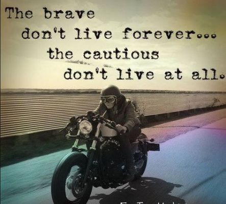 19 Trendy Funny Bike Riding Quotes Motorcycles Motorcycle Riding Quotes Bike Riding Quotes Riding Quotes