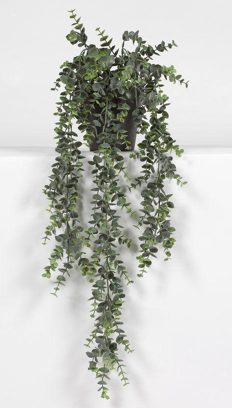 54cm Eucalyptus Succulent In Pot Hanging Plants Outdoor Eucalyptus Plant Indoor Artificial Plants