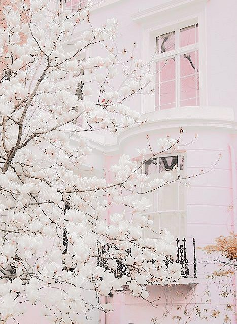 Think Pink Salvaged Inspirations Pastel Aesthetic Pink Houses White Aesthetic