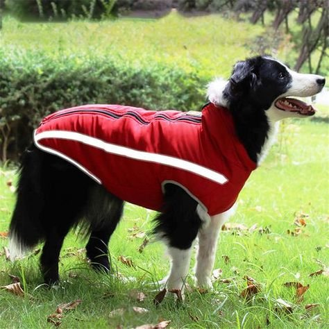 Material : 100% CottonType : DogsSeason : Autumn/WinterPattern : SolidDog clothes for Small dogs : dog clothes for big dogsPuppy Coat : Pug ClothingSize : XL,2XL,3XL,4XL,5XL,6XL About this item    MORE ATTENTION! -Please make sure to measure your dog's size before purchasing. Your baby usually wears size S doesn't mean all size S will fit him/her. please measure your dog's exact chest girth, back length and leave 1-2 inch more. If any of the measurements are between two sizes,please choose the l