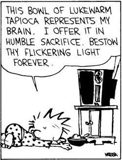 Image result for calvin and hobbes tv worship