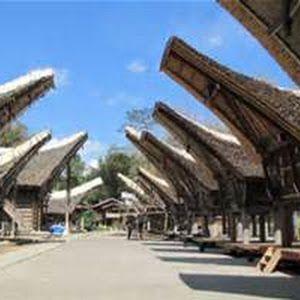 Tana Toraja Pemandangan Bahari Hijau