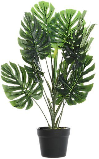 Monstera Artificial De 80 Cm Leroy Merlin Monstera Plantas