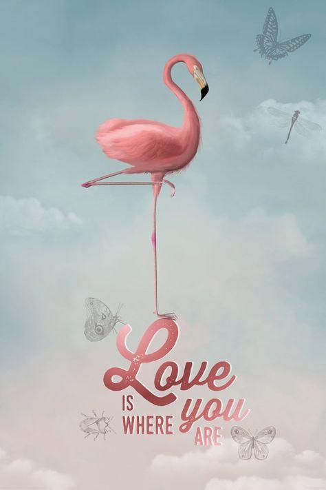 Lijst 61 X 91.Flamingo Chic Poster 61x91 5cm Poster Olifant Kunst Aan De
