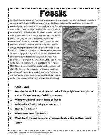 Fossils Comprehension Fossils Fossils Reading Comprehension Comprehension Worksheets Fossil worksheets 4th grade