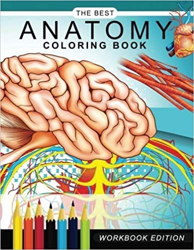 Amazon Com Anatomy Coloring Book Muscles And Physiology Workbook Edition 9781545202678 Dr Gary C K Anatomy Coloring Book Coloring Books Cat Coloring Book