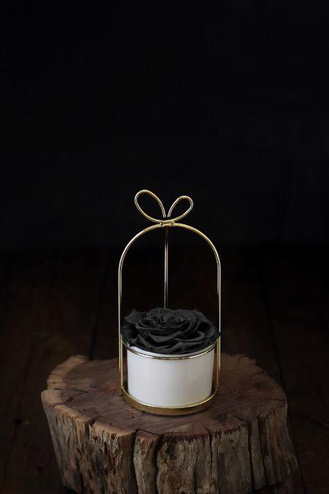 سلة فيونكة ورد ايلوبا روز طبيعي دائم لون اسود Online Gift Store Gift Store Rose Shop
