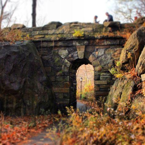 Central Park Dec. 2012