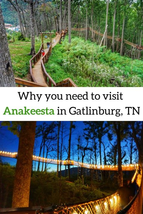 Why you need to visit Anakeesta in Gatlinburg, TN Located in the heart of downtown Gatlinburg, Tennessee, find out why Anakeesta is a great attraction for families and locals who desire a mix of adventure and relaxation. Gatlinburg Vacation, Gatlinburg Tennessee, Tennessee Vacation, Tennessee Camping, Tennessee Attractions, Gatlinburg Attractions, Pigeon Forge Tennessee, Roadside Attractions, Nashville Tennessee