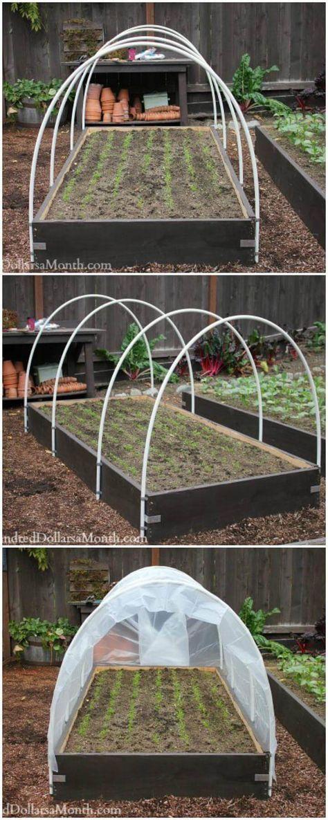 65 Trendy Garden Diy Greenhouse Pvc Pipes In 2020 Diy Greenhouse Diy Greenhouse Plans Greenhouse Plans