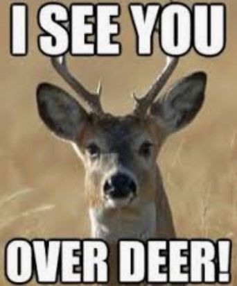 Pin By Mantripping On Hunting Jokes And Memes Funny Deer Hunting Jokes Deer Hunting Humor