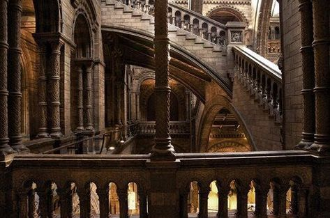 Imagem de architecture, harry potter, and hogwarts Hogwarts, Slytherin, London England, Natural History Museum London, The Secret History, The Infernal Devices, London Photos, Narnia, City Photography