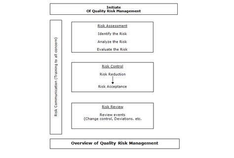Mind Map Of Risk Management Assessment  Mind Maps
