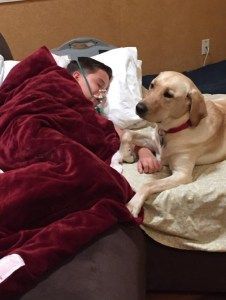 Hyper Shelter Dog Changes Life Of Boy With Epilepsy Shelter Dogs